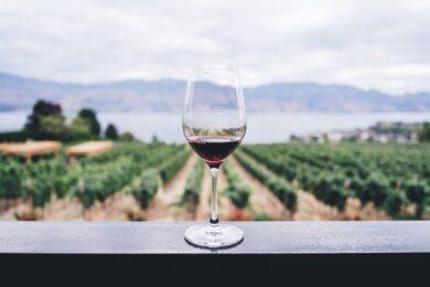 rode italiaanse wijn